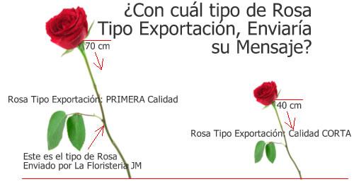 Rosas Tipo Exportación en Bogota a Domicilio